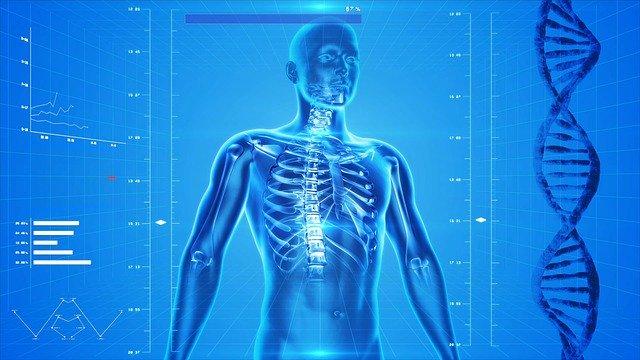 Comment prévenir les troubles musculo-squelettiques ?