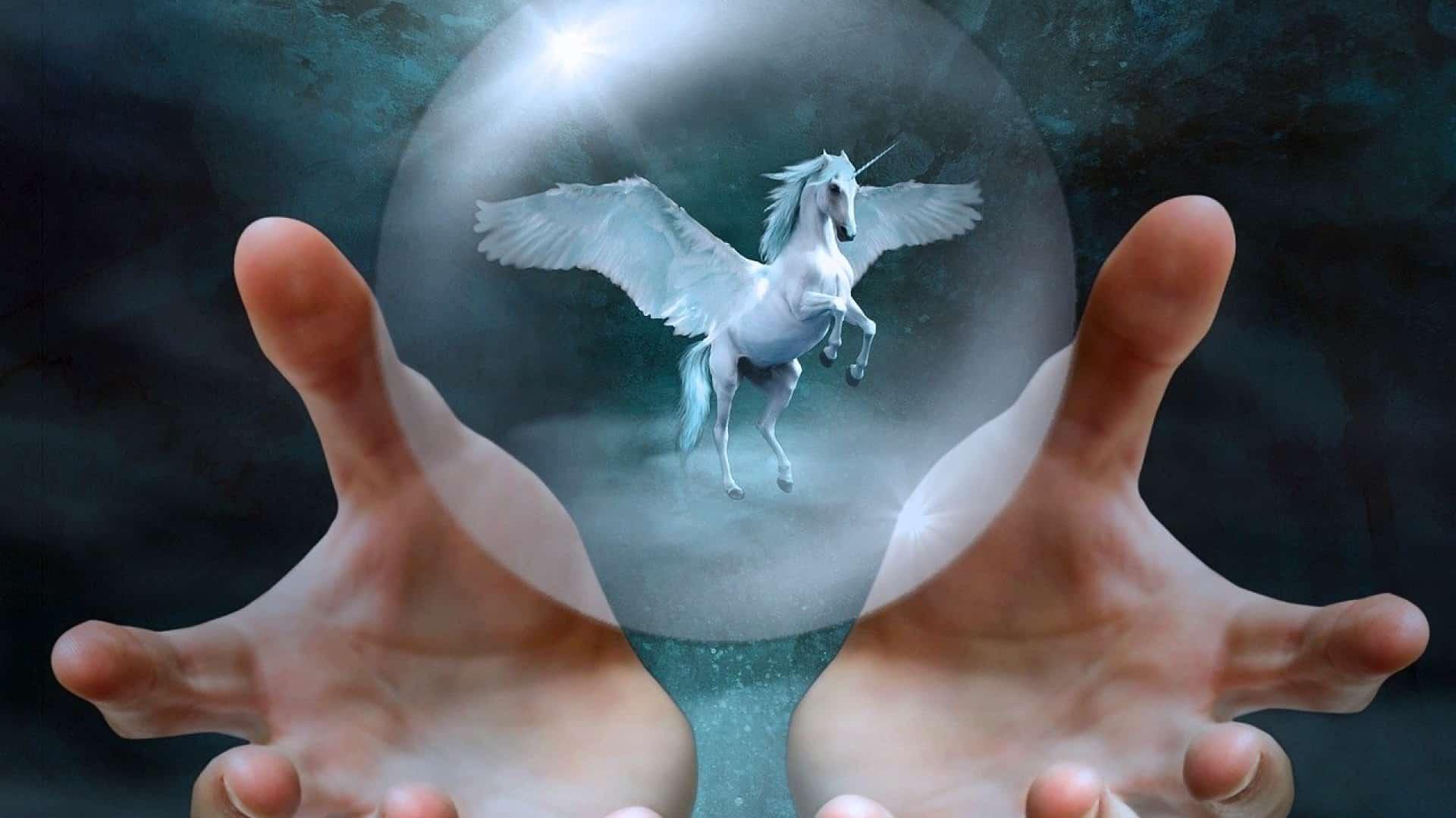 Tout ce que vous croyez savoir sur les licornes est probablement faux !