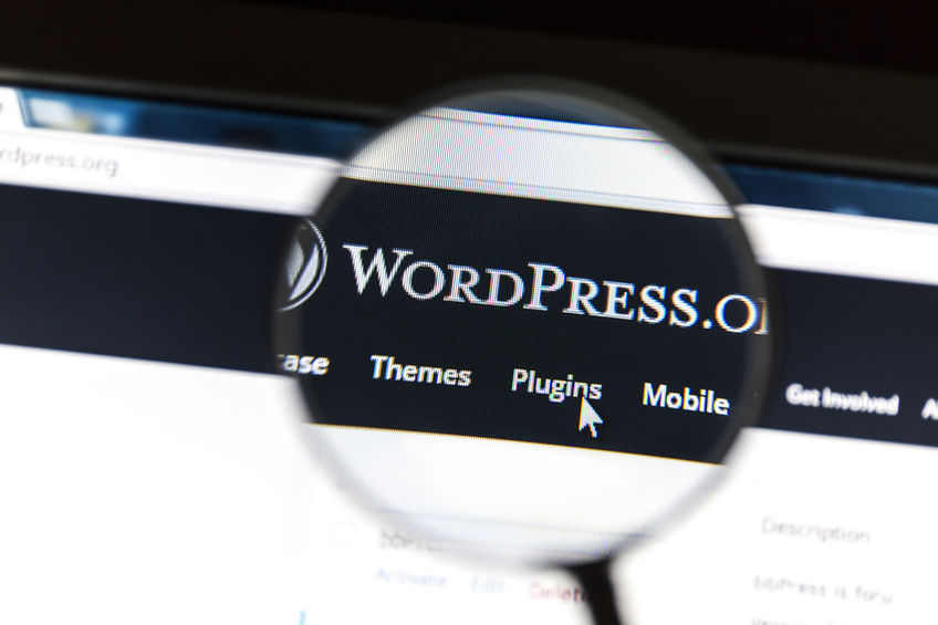 Site internet WordPress : deux informations utiles à avoir !