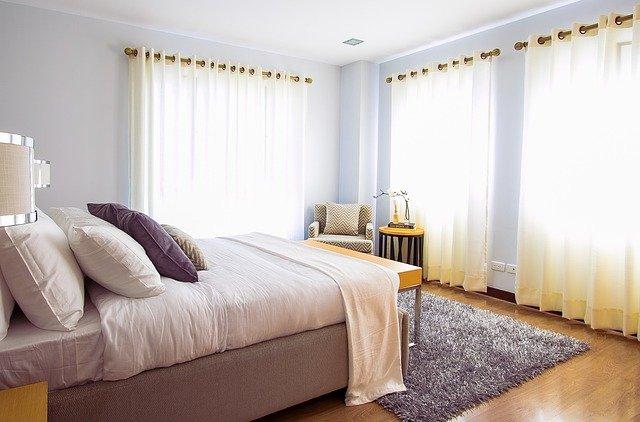 Qui contacter pour un traitement de punaises de lit à Strasbourg ?